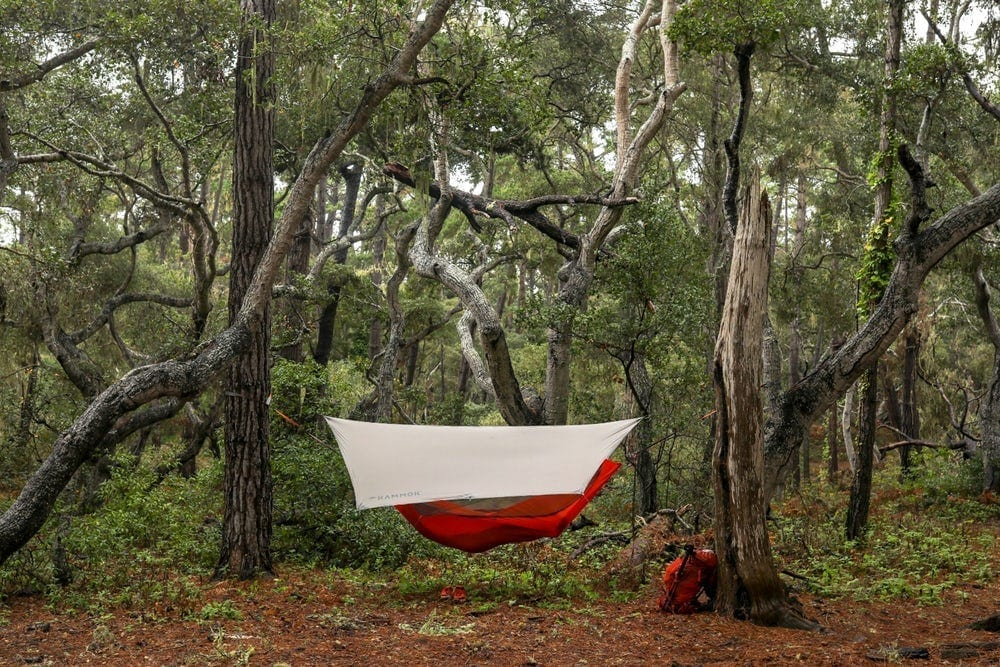 Revolutionize Your Camping With The Mantis Hammock Tent